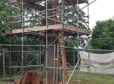scaffold-hire-halesowen